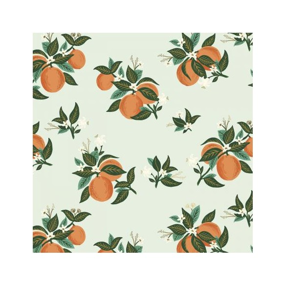 citrus blossom orange - rifle paper co