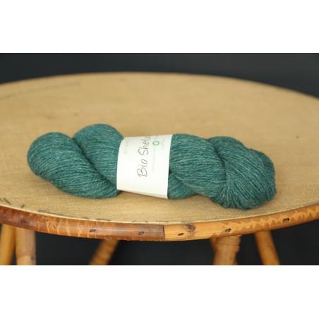 Bio Shetland vert sapin bc garn